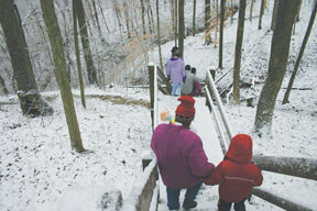 Brown County Winter Hike