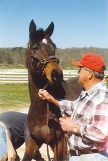 Kritzer Horse Farms - B.J. Kritzer