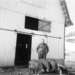 Life on the Farm 2