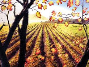November on the Farm
