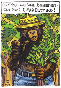 Save Our Yellowwood Forest