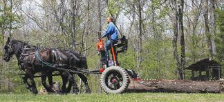horsepower-driven farm